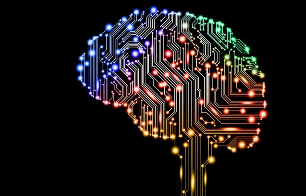 Мозг - основной компонент интеллекта