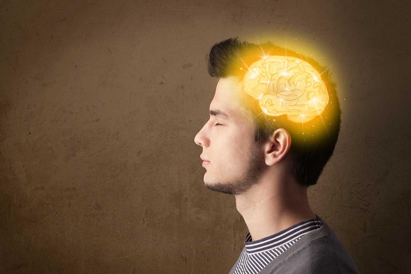 Мозг. Инструкция по применению 3