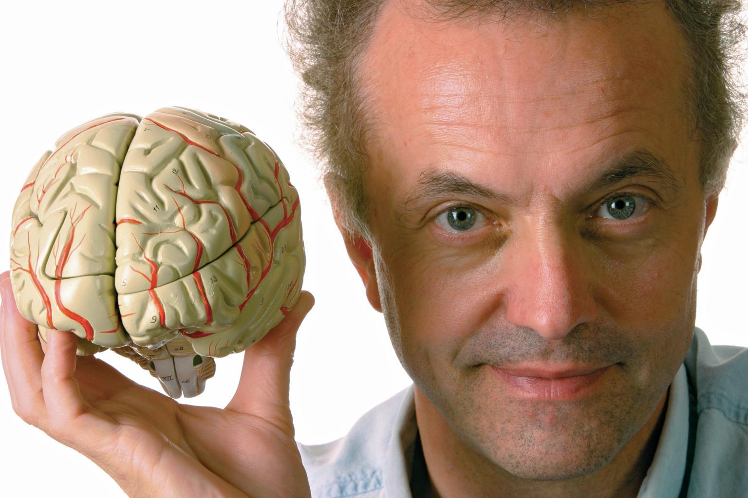 мужчина держит макет мозга